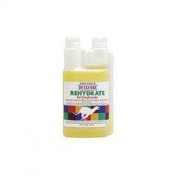 Vetsense Rehydrate 500ml