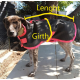 Dog Coat Measuring Guide